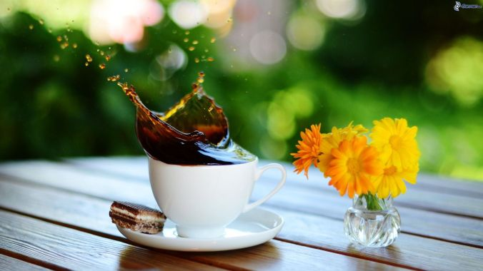 caffe,-splash,-fiori-gialli-161841.jpg